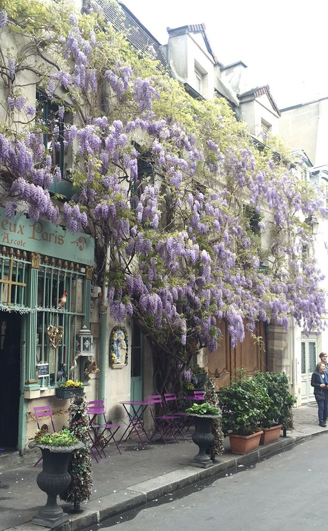 The Paris review and wardrobe travelogue ~Paris in Spring~