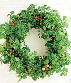 DIY living wreath: Tomato