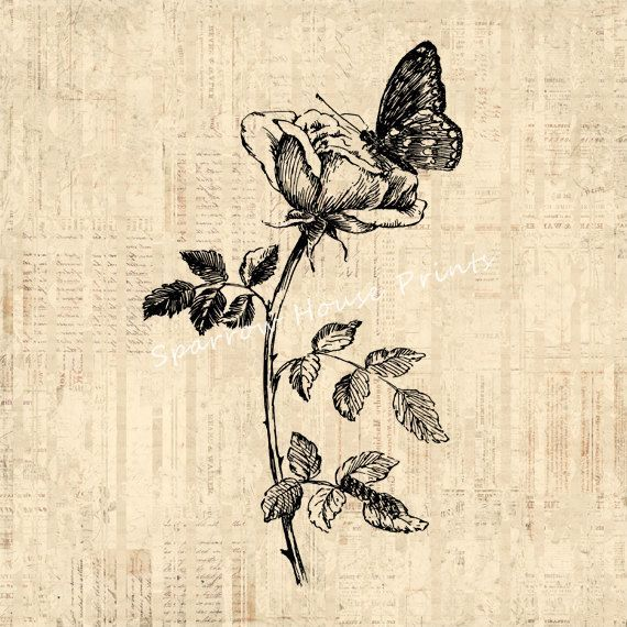top 25 best rose and butterfly tattoo ideas on pinterest. Black Bedroom Furniture Sets. Home Design Ideas