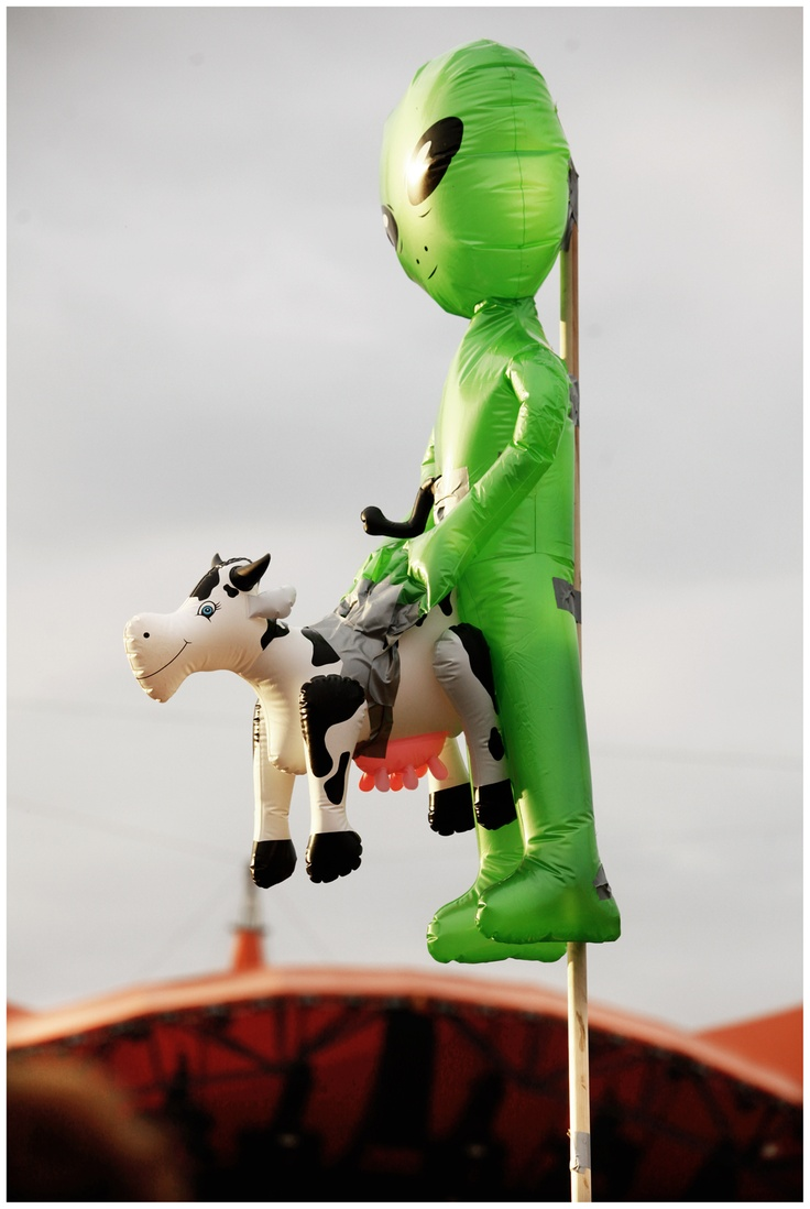No Roskilde without the cow-banging alien