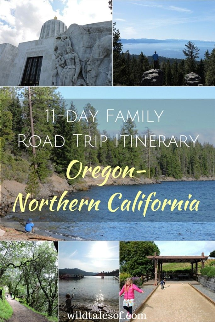Looking for a fun Northwest Vacation this summer, check out this 11 day Family road trip in Oregon and Northern California.