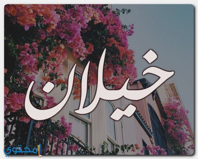 معنى اسم خيلان Khilan وحكم التسمية معاني الاسماء Khilan اسم خيلان Calligraphy Arabic Calligraphy Art