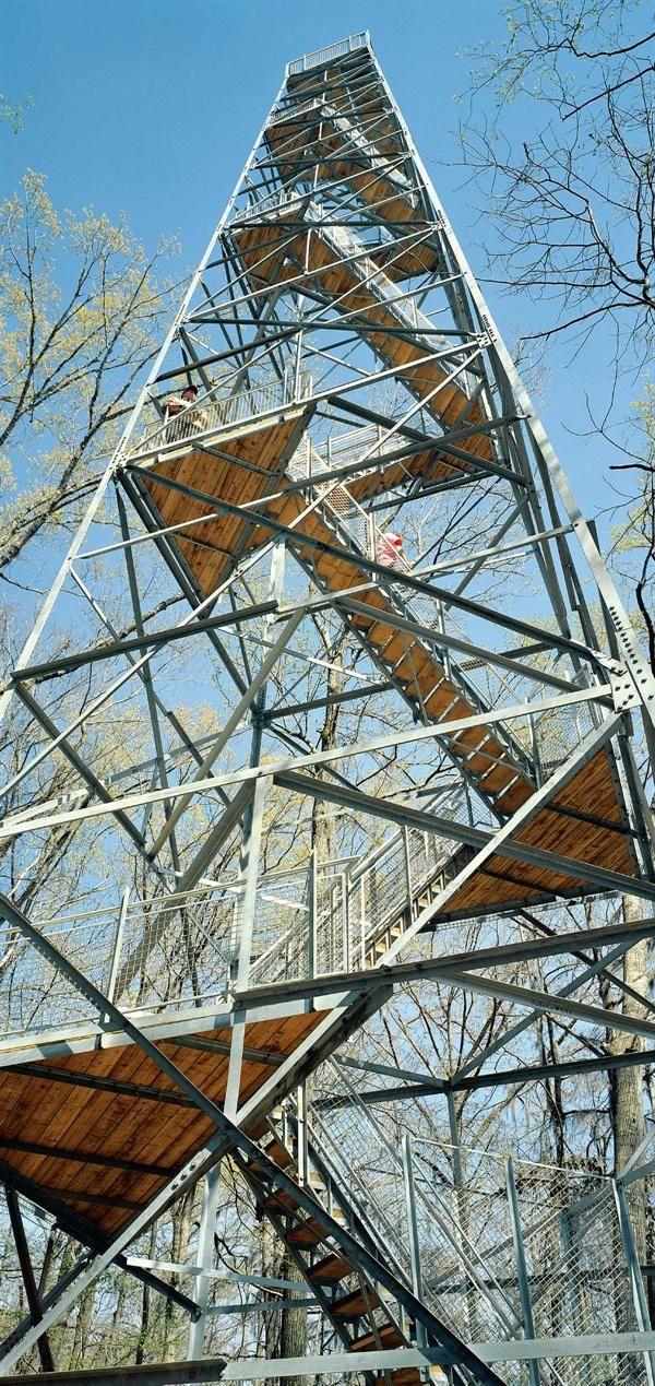 Birding Tower - Architect Magazine