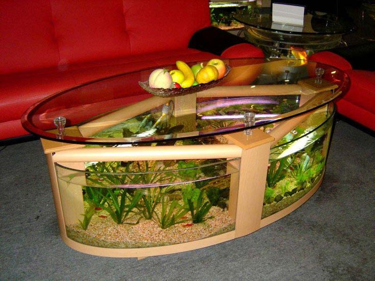 17 best ideas about cheap fish tanks on pinterest fish for Cheap fish tanks