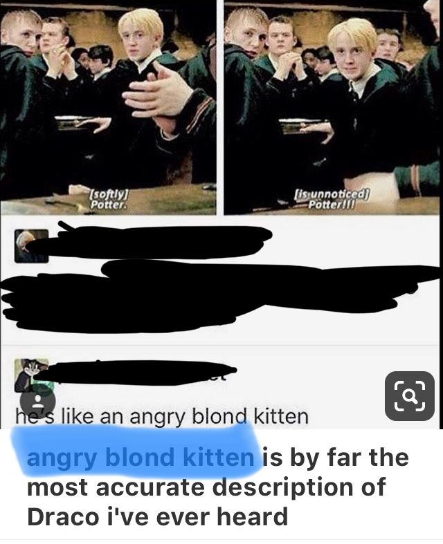 Pin by Kako on HP Quotes in 2019   Harry potter puns, Harry potter