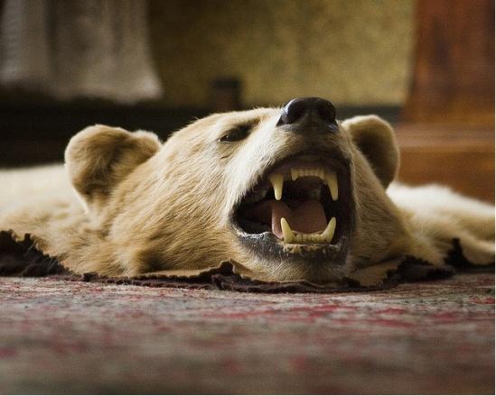 Bear rug want