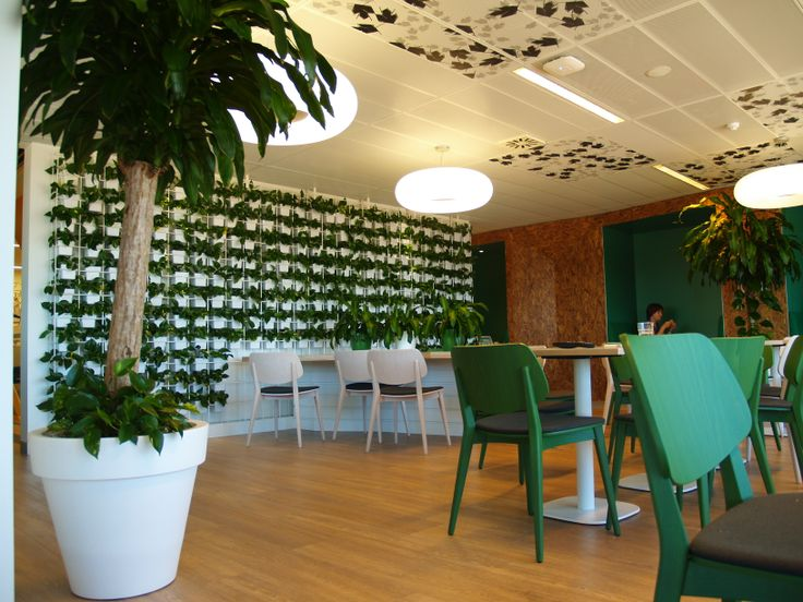 Don't just add a vertical garden...create an atmosphere for your break out areas!!! See more at www.greendesign.com.au