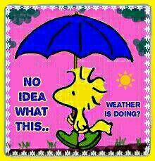 Strange Weather? Snow Sun ☀ Wind, Rain, ice ❄ Clouds, Warm, Pink Skies etc All in 1 Day?