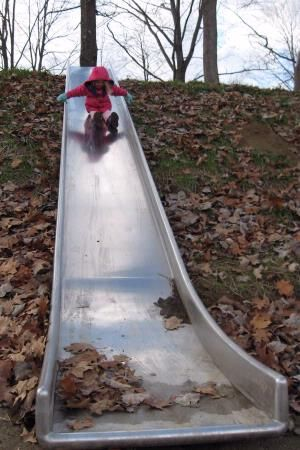 slide, play garden idea.  We have a slope...now where to find the slide...