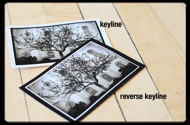 Photographers love Keyline Bordered Prints -Photos Ideas, Border Prints, Photos Bugs, Photos Frames, Keyline Border, Cameras Lessons, Pictures Perfect