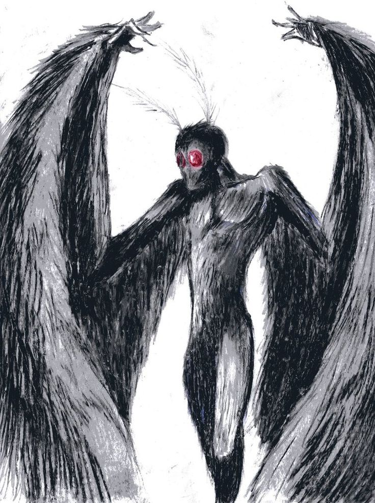 Image result for mothman