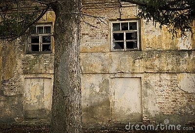 Dilapidated exterior of an old building near a large tree.