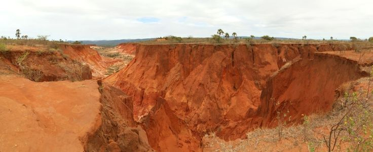 The amazing Red Tsingy, an enormous ravine of sharp, ancient rock formations unique to Madagascar.