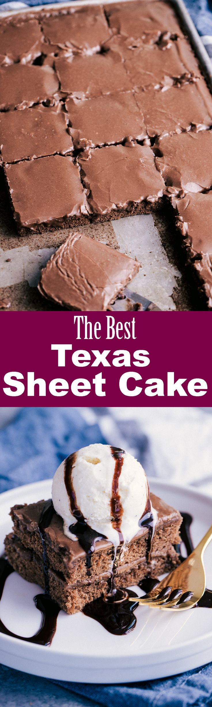 It's says the best but the only chocolate Texas sheer cake I likens my mom's: )
