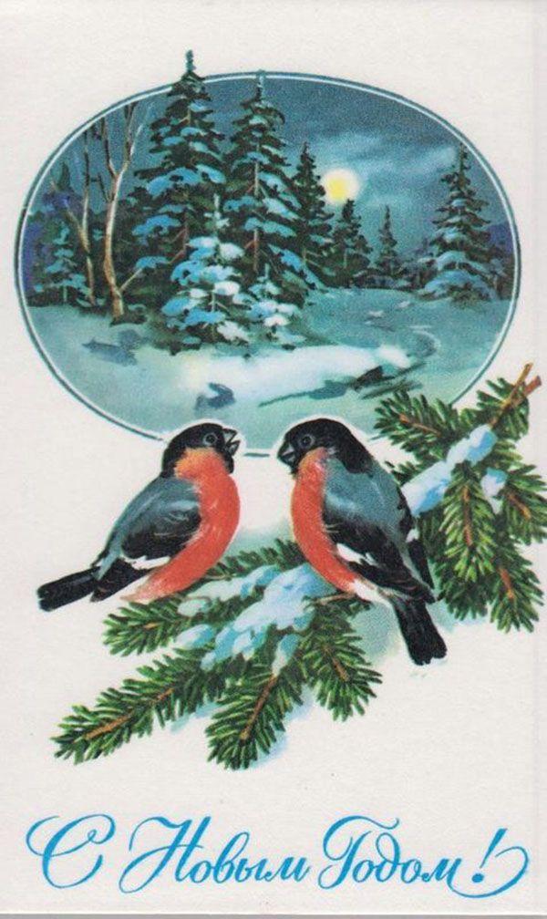 Открытки снегирей