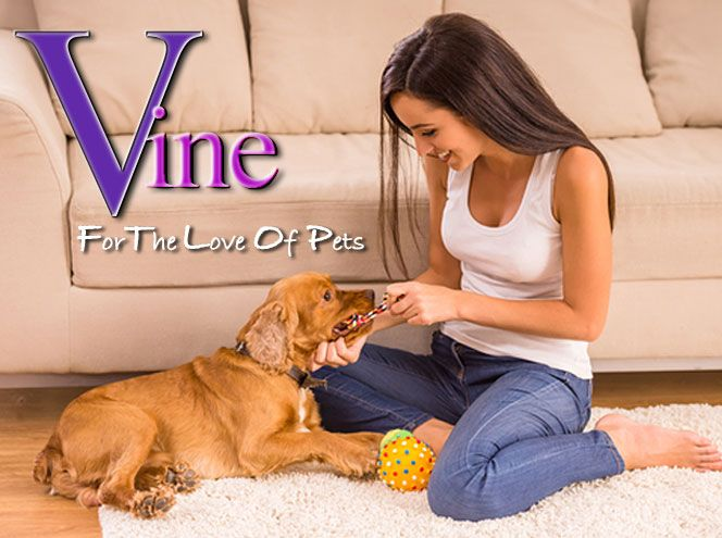 Australian Vine Psychic Reading Line looks at the openly discriminatory rental laws that stop people from having a pet in rental properties. Even apartment owners are being advised they can't have pets in their own homes. What are the psychic effects of not being able to have a pet? #psychic #pets #RealEstate #Renting #Property