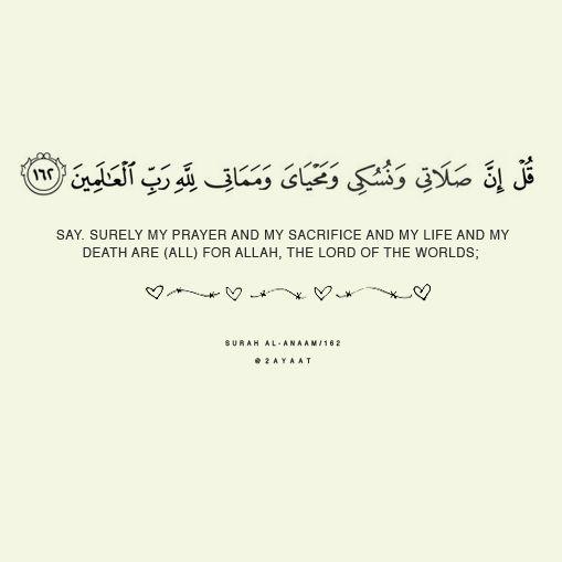 Quran 6:162 – Surat al-Anaam   ISLAM   Pinterest   My ... Muslim Family Life Quotes