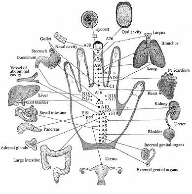Korean Hand Reflexology.  Been around a lot longer than prescription medicines!