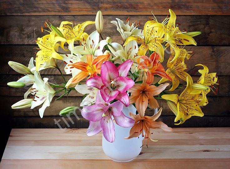 Яркие лилии в белой вазе, картина раскраска по номерам ...