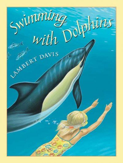 Dolphins Essay