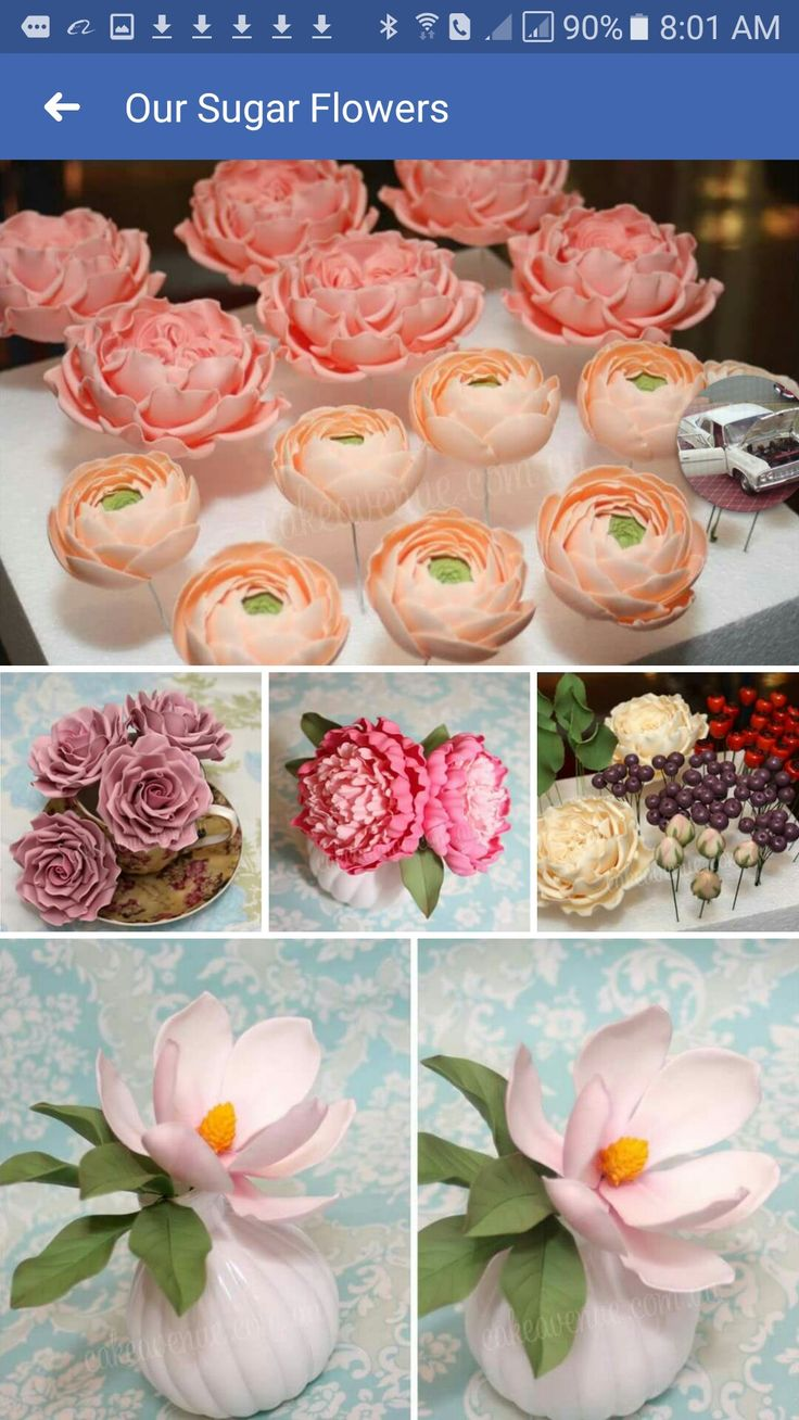 827 best gumpastefondant flowers images on pinterest decorating find this pin and more on gumpastefondant flowers by margo dawson izmirmasajfo