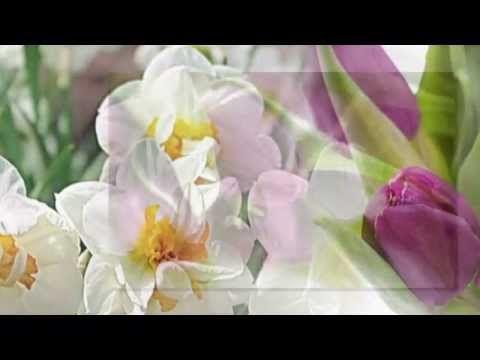 Ф. Шопен вальс № 10 Весне навстречу.. - YouTube