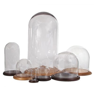 Glass Domes