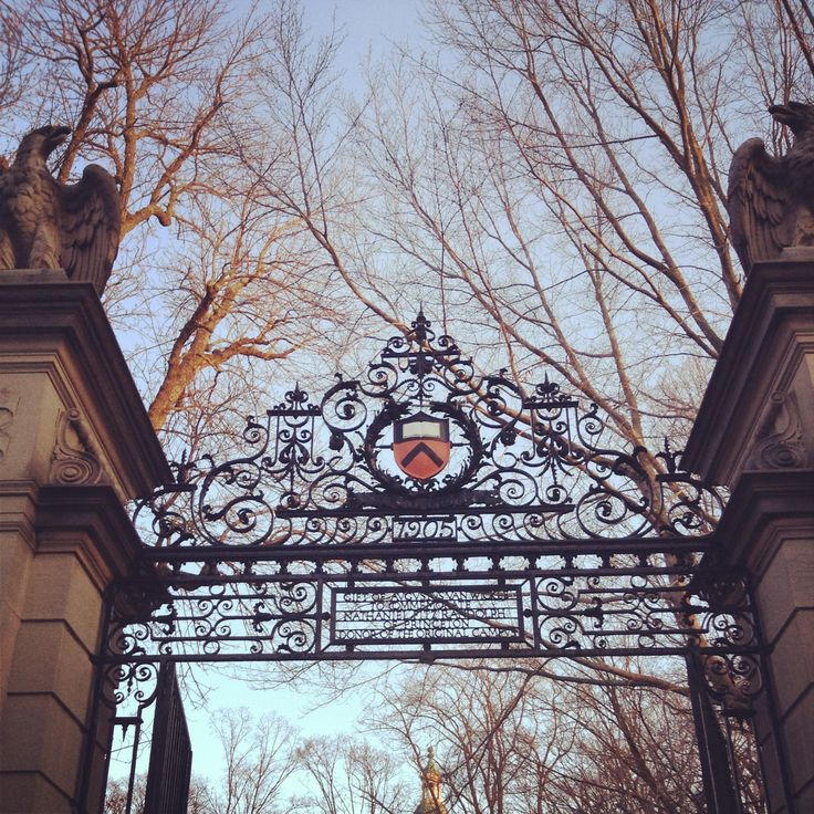 Princeton, a pretty credible University (if you ask me), vetted me and found me to be pretty awesome