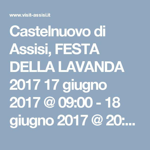 """Castelnuovo di Assisi, FESTA DELLA LAVANDA 2017   17 giugno 2017 @ 09:00 - 18 giugno 2017 @ 20:00         programma   """"Festa"""