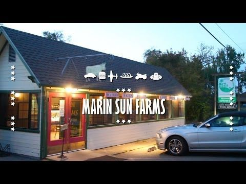 Travel Guide | Marin Sun Farms | Point Reyes