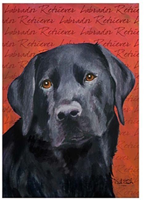 54 best loss of pet memorial images on pinterest stair for Dog house for labrador retriever