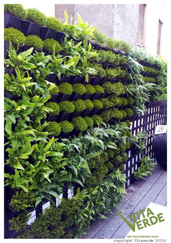 Outdoor #verticalgarden that beautifies a restaurant #balcony