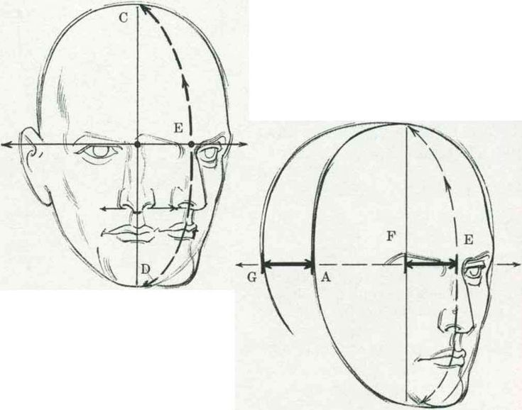 draw human nose - Google Search