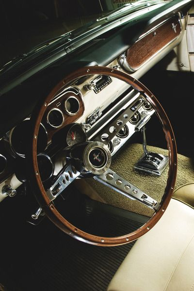 take the wheel baby #SALSITinspo