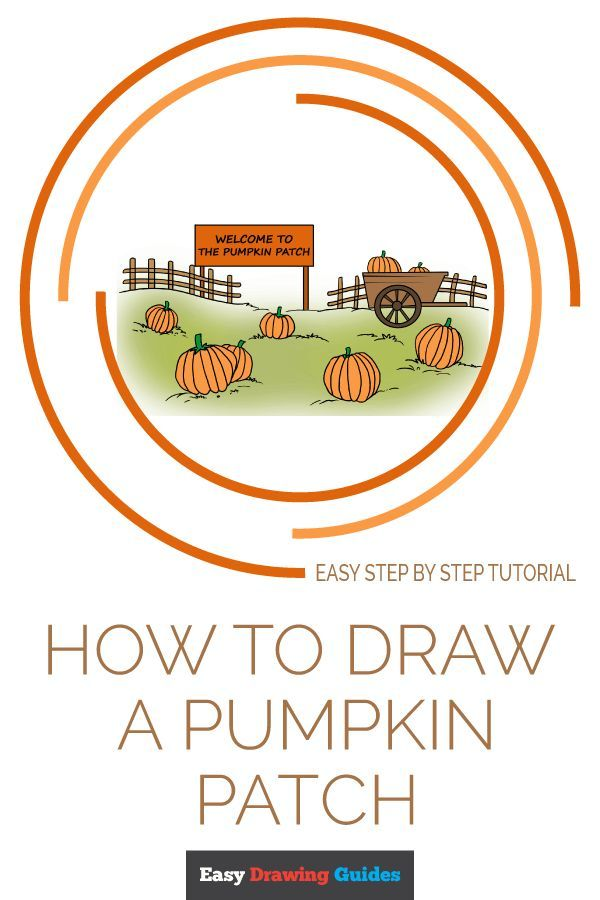 How To Draw A Pumpkin Patch Drawing Tutorial Easy Drawing