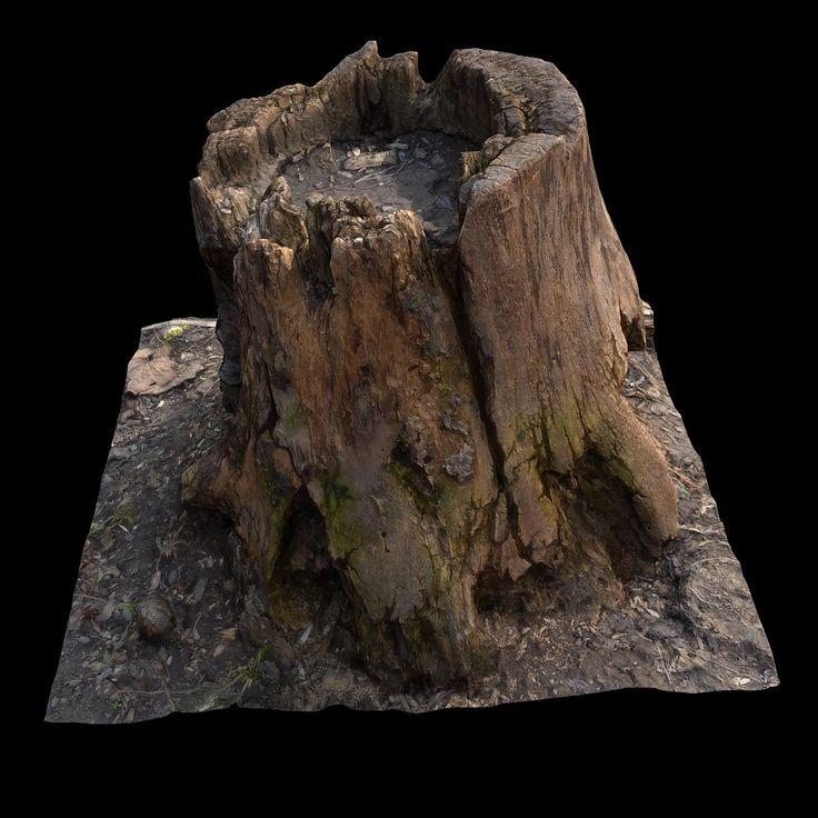 old stump, Valery Krukovets on ArtStation at https://www.artstation.com/artwork/qKvWL