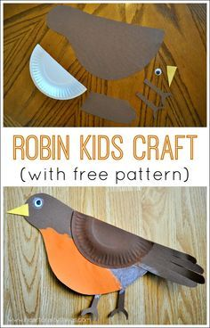 Learn about Robins and make this cute Robin Bird Kids Craft. Great spring craft for kids.