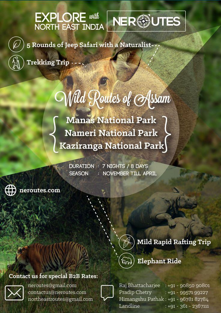 Wildlife##Tours#northeast#india##www.neroutes.com