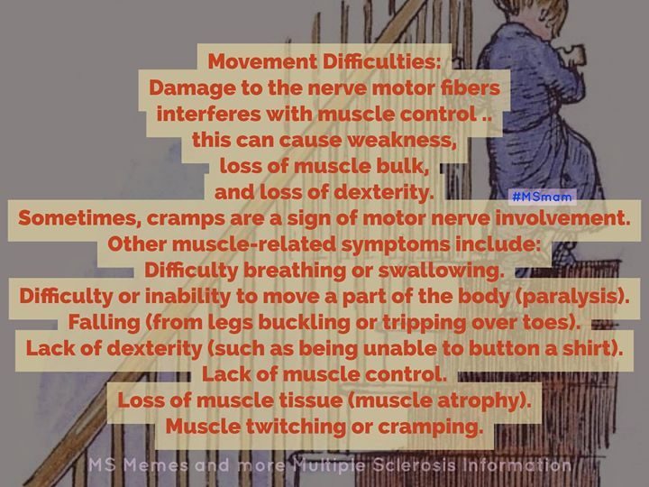 17 best ideas about nerves of the leg on pinterest for Loss of motor control