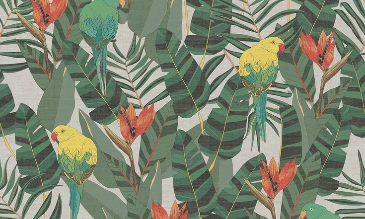 Arcadia | Curiosa wallpaper | Collections | Arte wallcovering