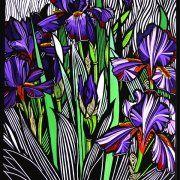 Iris by Gail Kellett, 65cm w x 85cm h
