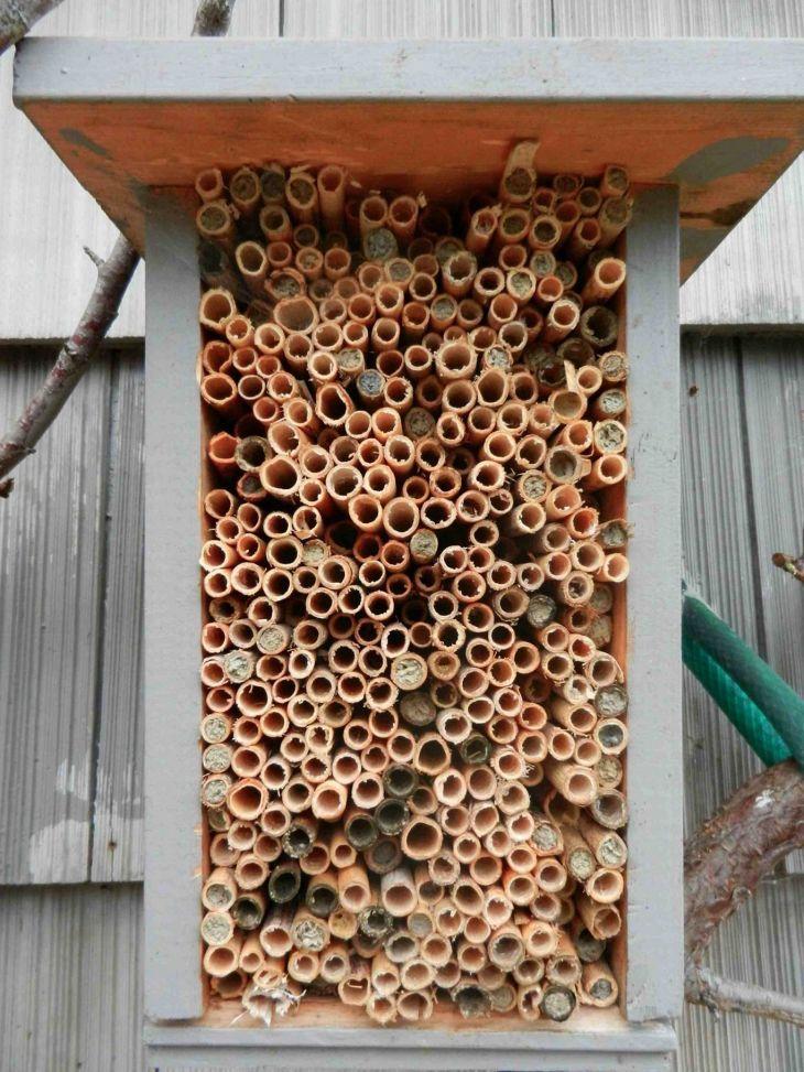 Best 8 diy mason bee house design for beginner decoredo