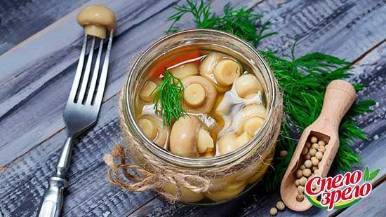 Маринованные шампиньоны и их полезные свойства. Шампиньоны — это довольно распространенные грибы, которые не требуют специальных условий для выращивания. Это вкусные, полезные и максимально легкие в приготовлении грибы. Почему именно этот вид грибов стал настолько востребованной культурой? Чем они полезны? http://www.spelo-zrelo.ru/poleznoe/svoistva/polza-i-vred-marinovannyh-shampinonov/