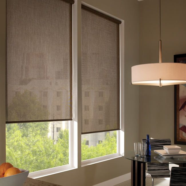Comfortex Envision Solar Shades: When it's fabric that matters, Envision Roller Shades are the window treatment that you want! Offering both style and function, this line of roller shades gives you screens, fashion-forward prints and weaves, and the new environmentally-friendly EcoGreen line, just to name a few.