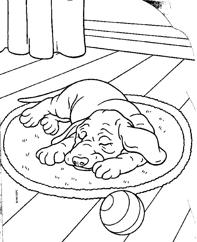 83 best Värityskuvia koirat images on Pinterest Coloring books - new coloring pages beagle puppies