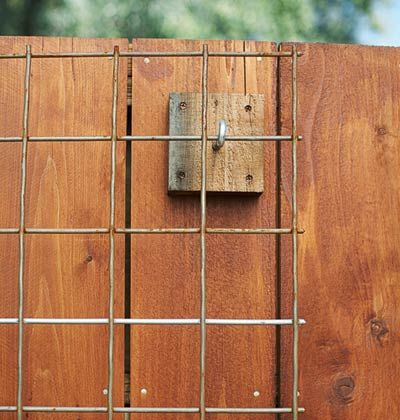 How to Build a Fence Mounted Trellis - Cut a 5 x 10 foot piece of rigid 1/4-inch wire mesh. Attach four wood blocks to the fence (one for each corner of mesh), screw a hook into each block, and fit the mesh over the hooks.