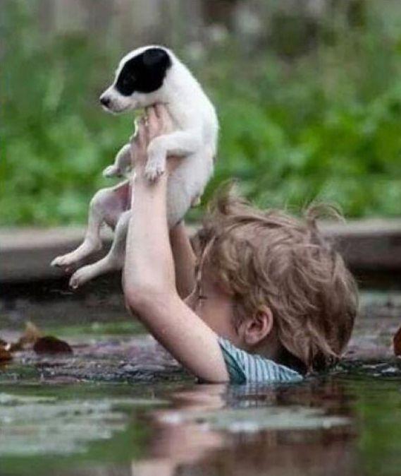Niño en Serbia en medio de las peores inundaciones ayudando a un amigo