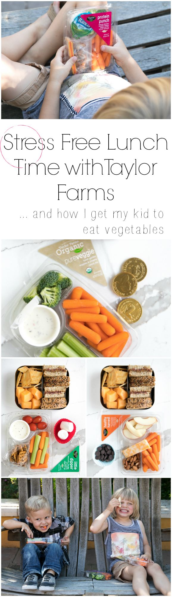 Easy and stress free lunch ideas for both kiddos and grown ups (and how I get my 3 year old to get his veggies!) #kids #kidfood #lunch #lunchboxideas #sponsored