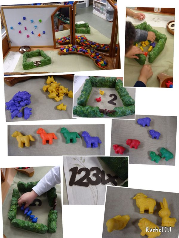 """Counting, sorting and pattern-making with animals - from Rachel ("""",)"""