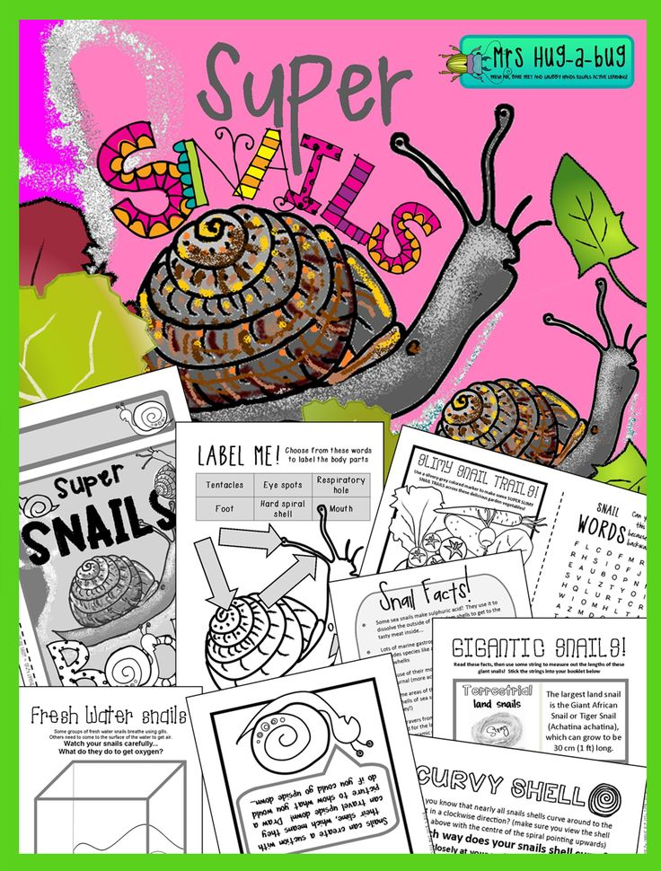 Did you know that garden snails can have thousands of teeth on their TONGUES?! Come and learn some more about the cheeky gastropods that have been nibbling your veggies! Terrestrial, fresh water and marine snails and slugs are all included in this 32 page 'fun and facts' Super Snail booklet... $